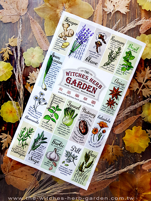 The Witches Herb Garden】